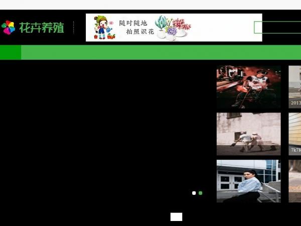 0818news.com