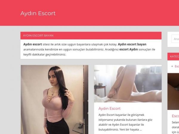 aydinmanifatura.com