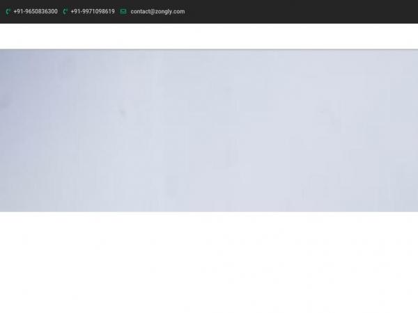 zongly.com