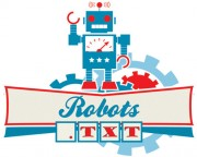 How to Use Robots.txt ?